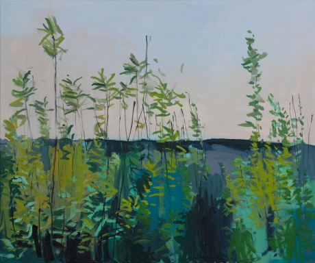 Spring Island 37 x 47in