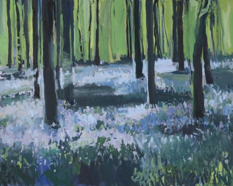 Bluebell forest shadows 47 x 59in