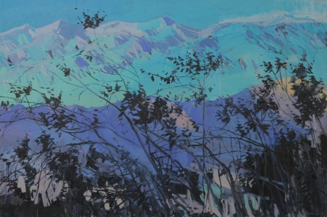 Death Valley mountain branches  40 x 60in