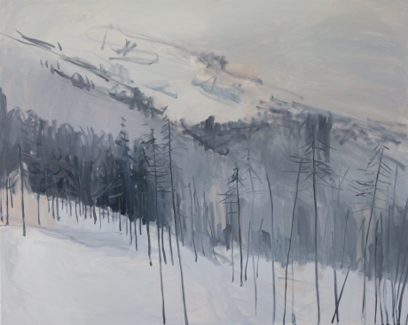 Grey mountain side 40 x 60in