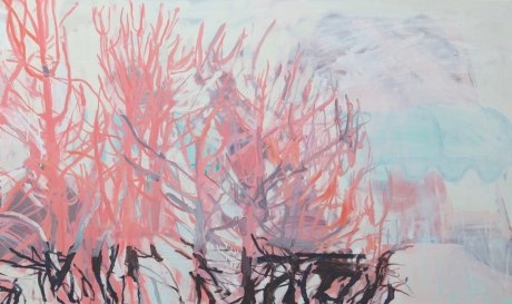 palm springs pink 36x 60in